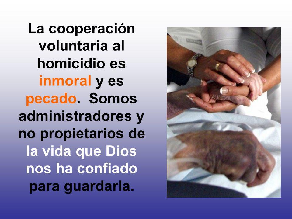 La cooperación voluntaria al homicidio es inmoral y es pecado