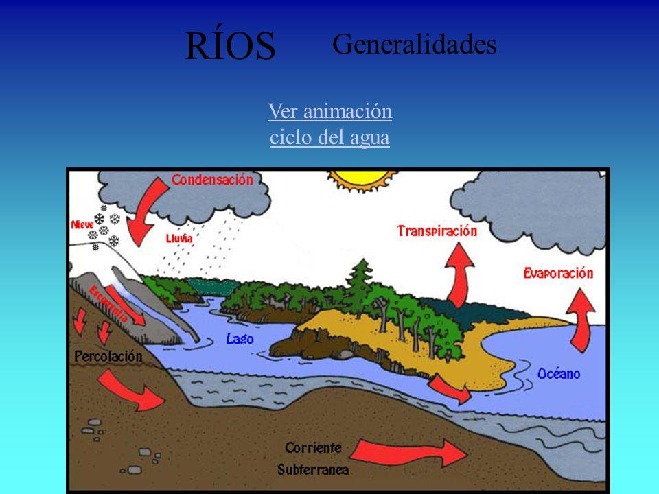 Ver animación ciclo del agua