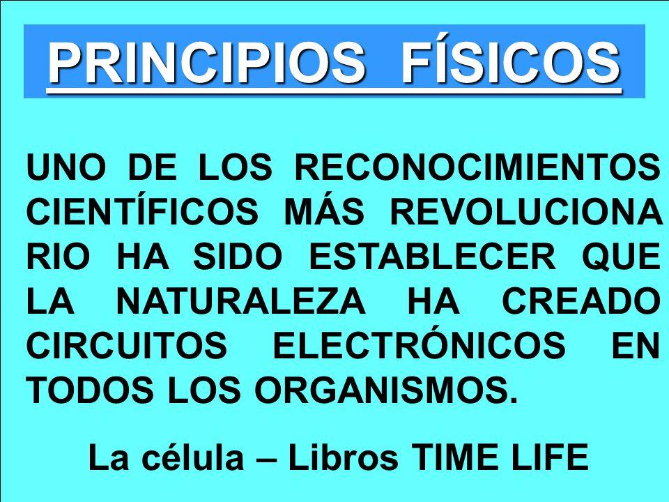 PRINCIPIOS FÍSICOS