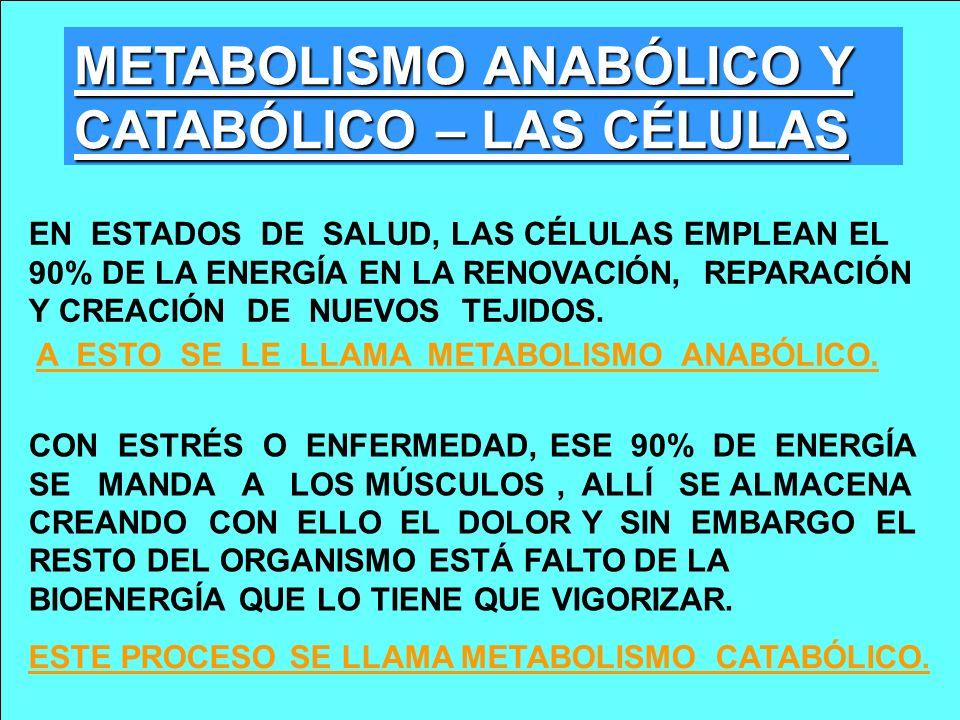 METABOLISMO ANABÓLICO Y CATABÓLICO – LAS CÉLULAS