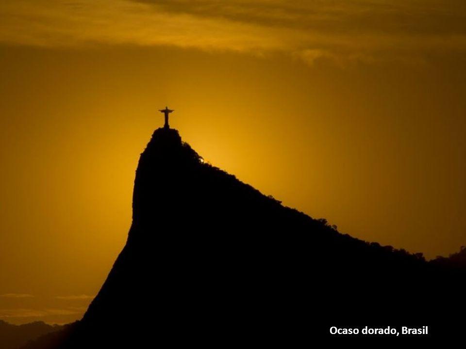 Ocaso dorado, Brasil