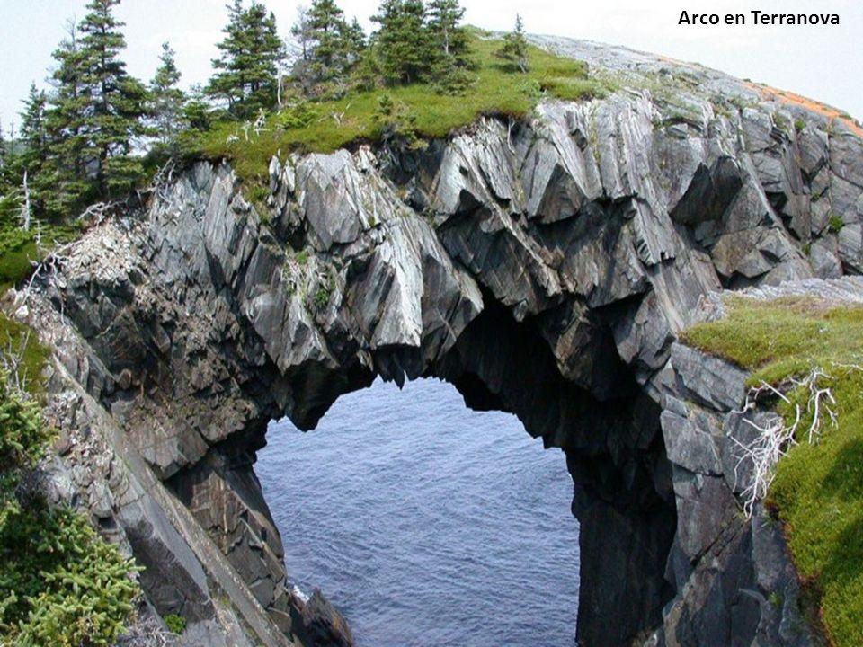 Arco en Terranova