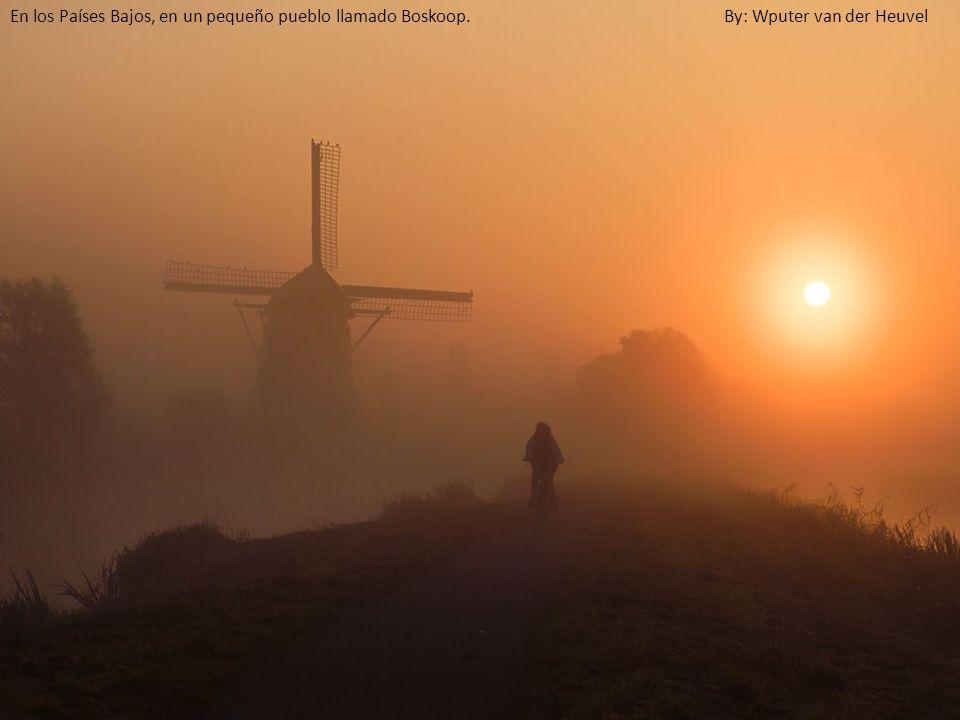 En los Países Bajos, en un pequeño pueblo llamado Boskoop