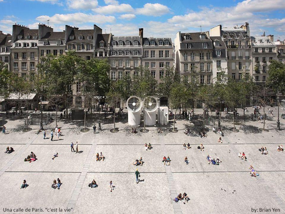Una calle de París. c est la vie by: Brian Yen