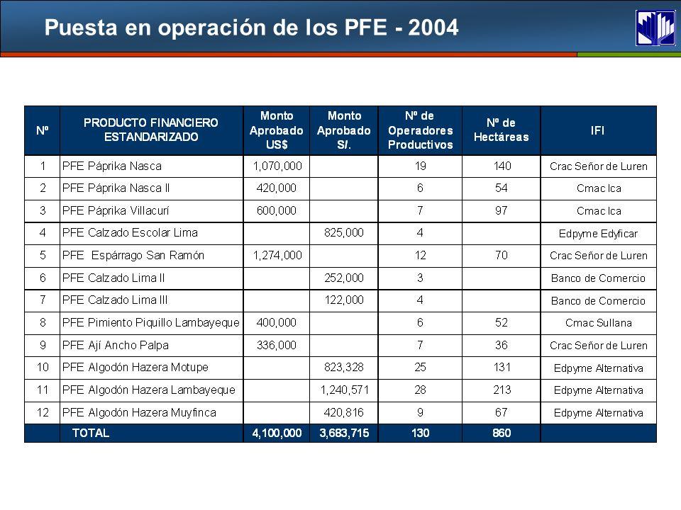 Puesta en operación de los PFE - 2004