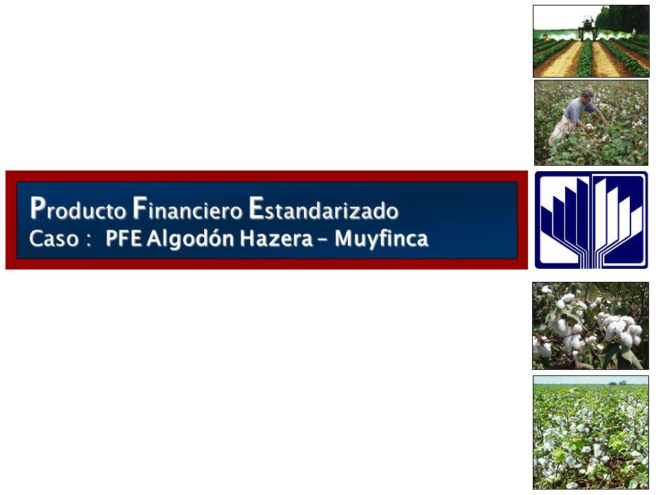 Producto Financiero Estandarizado Caso : PFE Algodón Hazera – Muyfinca
