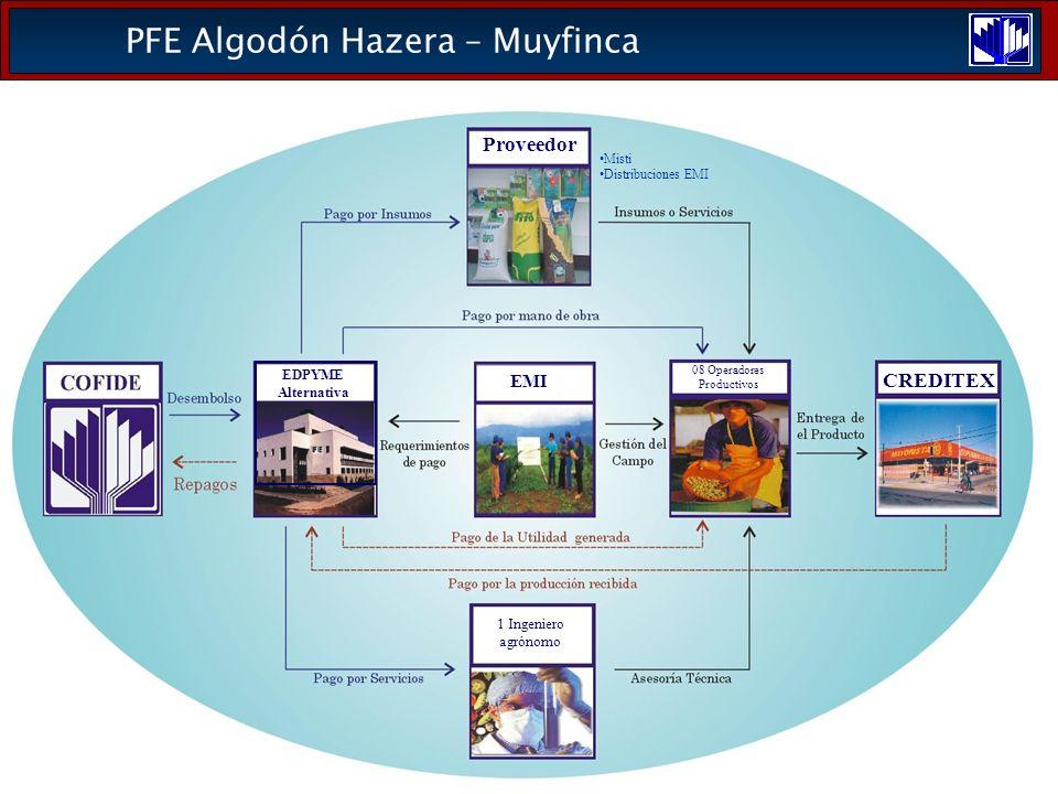 PFE Algodón Hazera – Muyfinca