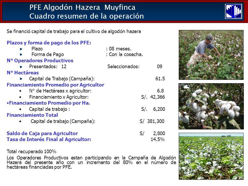 PFE Algodón Hazera Muyfinca Cuadro resumen de la operación