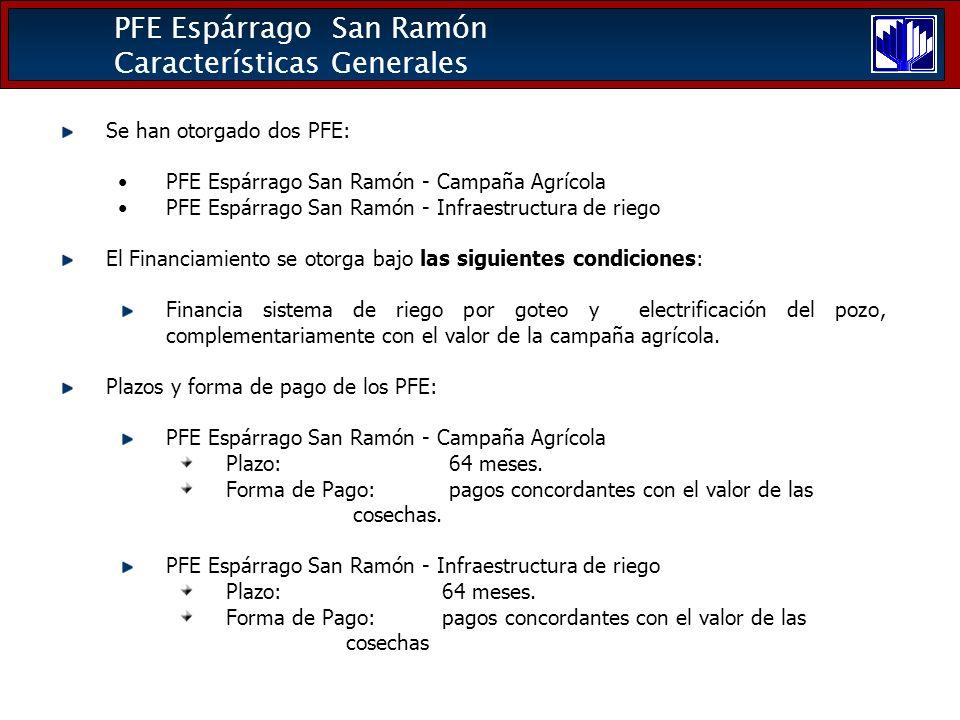 PFE Espárrago San Ramón Características Generales