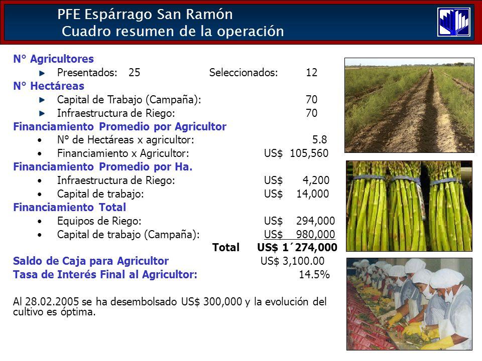 PFE Espárrago San Ramón Cuadro resumen de la operación