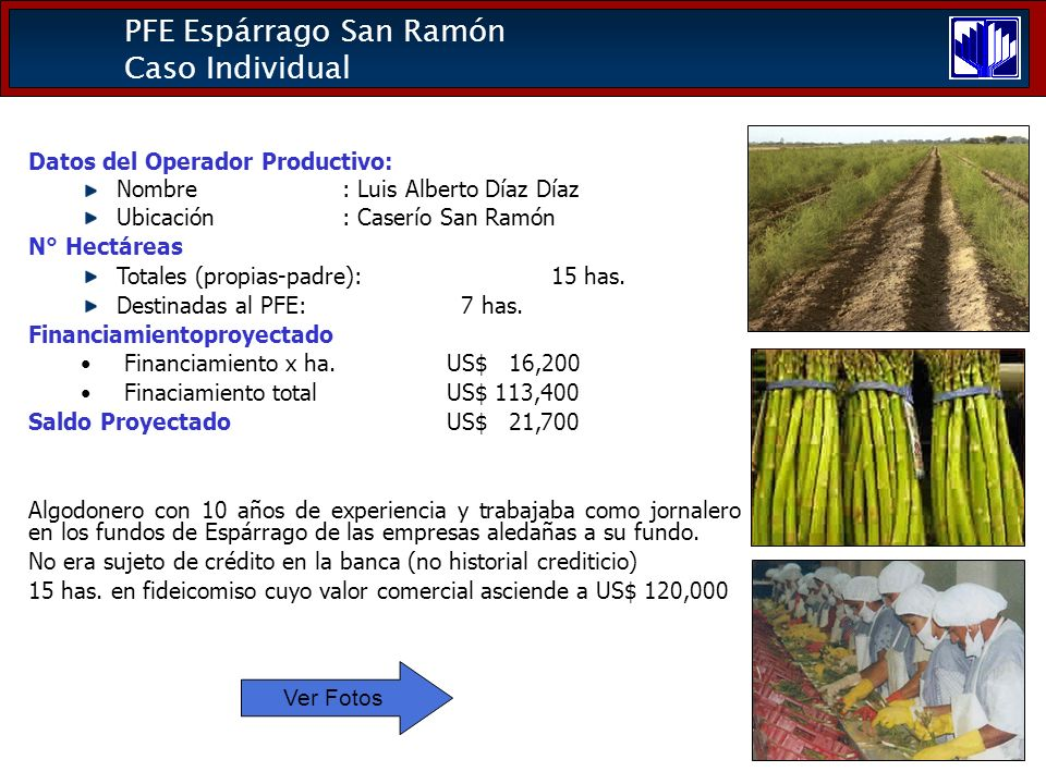 PFE Espárrago San Ramón Caso Individual