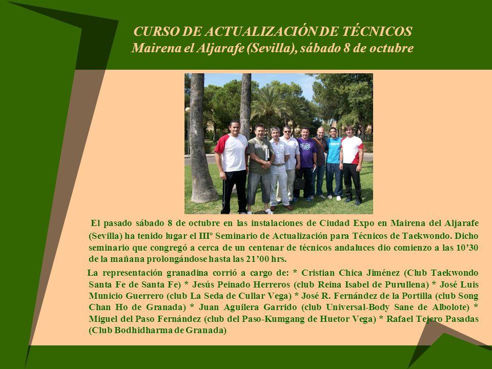 CURSO DE ACTUALIZACIÓN DE TÉCNICOS Mairena el Aljarafe (Sevilla), sábado 8 de octubre