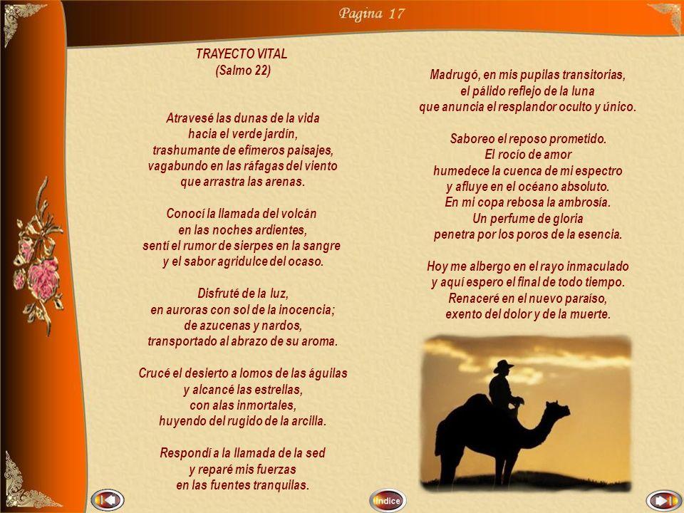 17 TRAYECTO VITAL (Salmo 22) Madrugó, en mis pupilas transitorias,