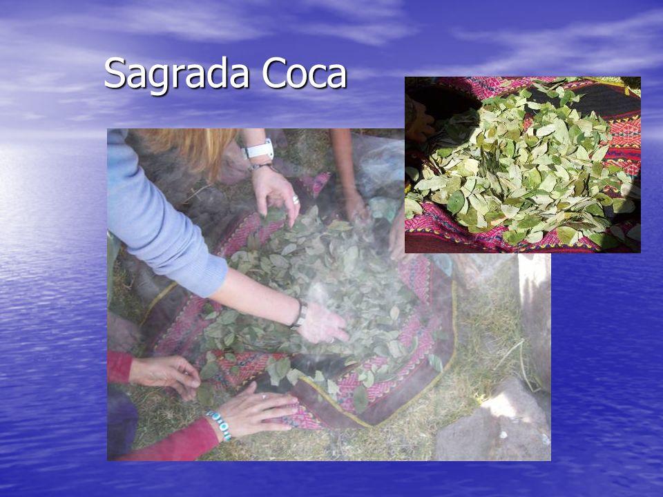 Sagrada Coca