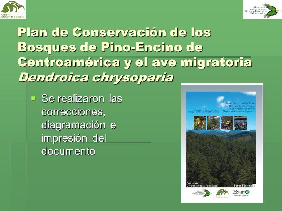 Plan de Conservación de los Bosques de Pino-Encino de Centroamérica y el ave migratoria Dendroica chrysoparia