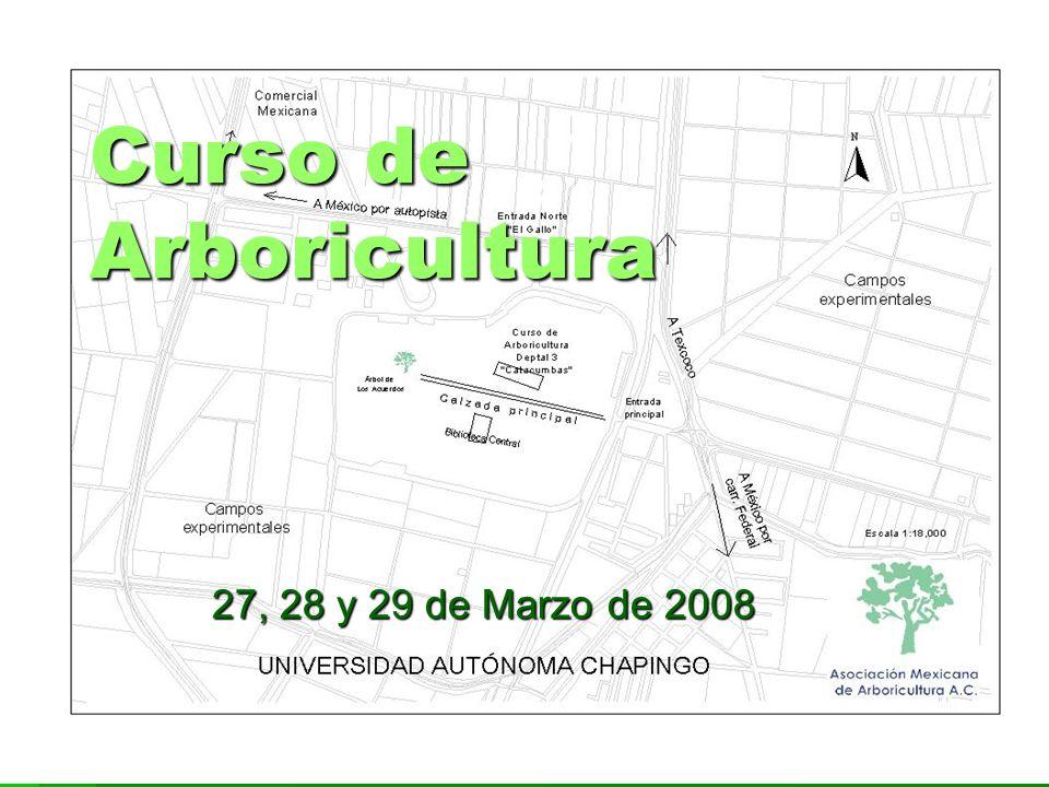 Curso de Arboricultura