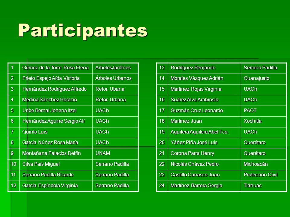 Participantes 1 Gómez de la Torre Rosa Elena ArbolesJardines 2