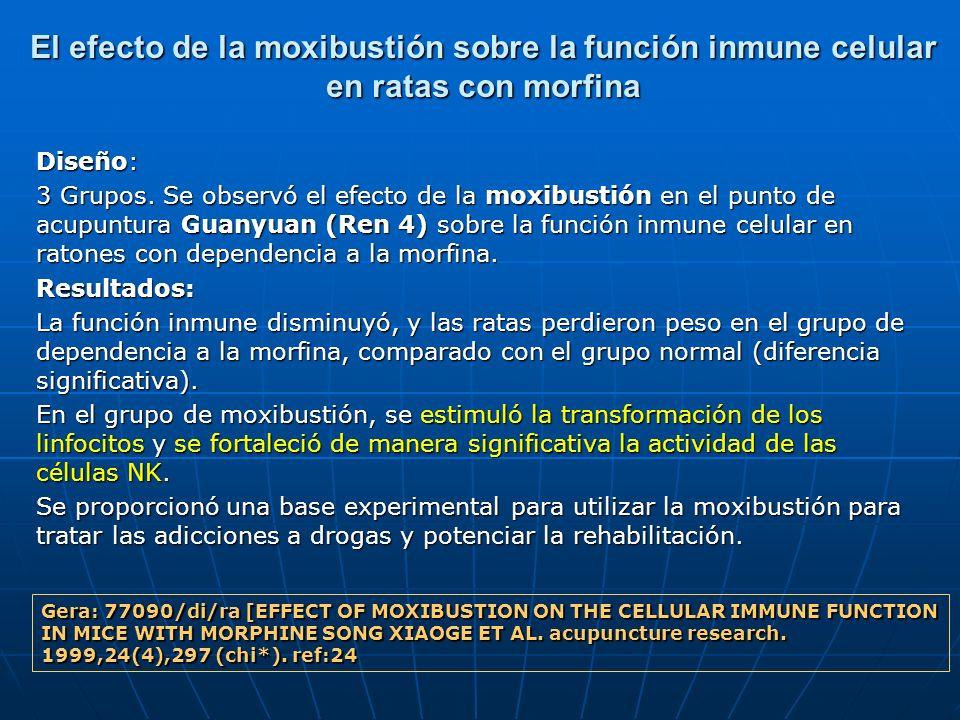 El efecto de la moxibustión sobre la función inmune celular en ratas con morfina