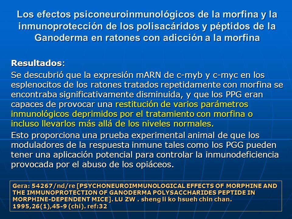 Los efectos psiconeuroinmunológicos de la morfina y la inmunoprotección de los polisacáridos y péptidos de la Ganoderma en ratones con adicción a la morfina