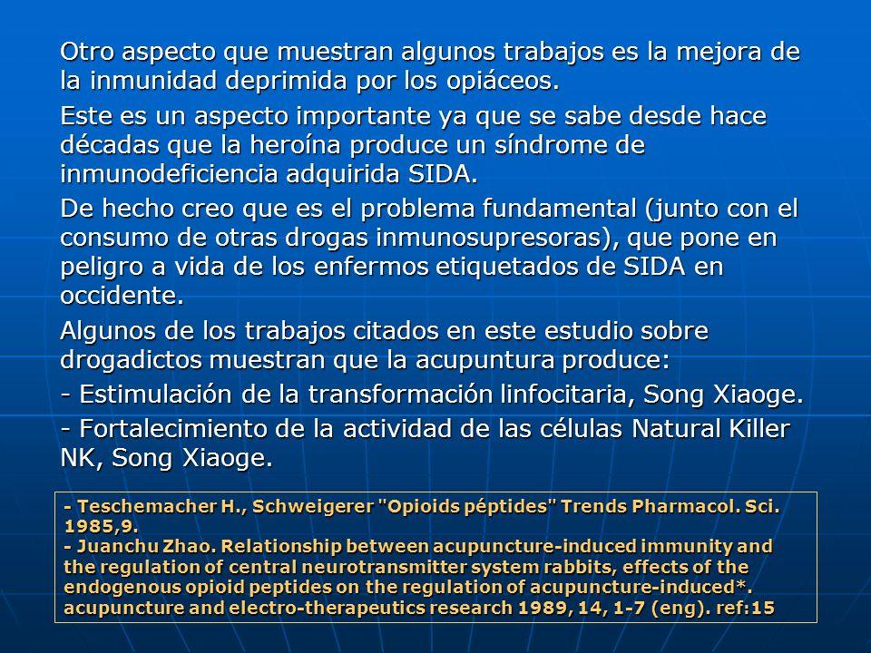 - Estimulación de la transformación linfocitaria, Song Xiaoge.
