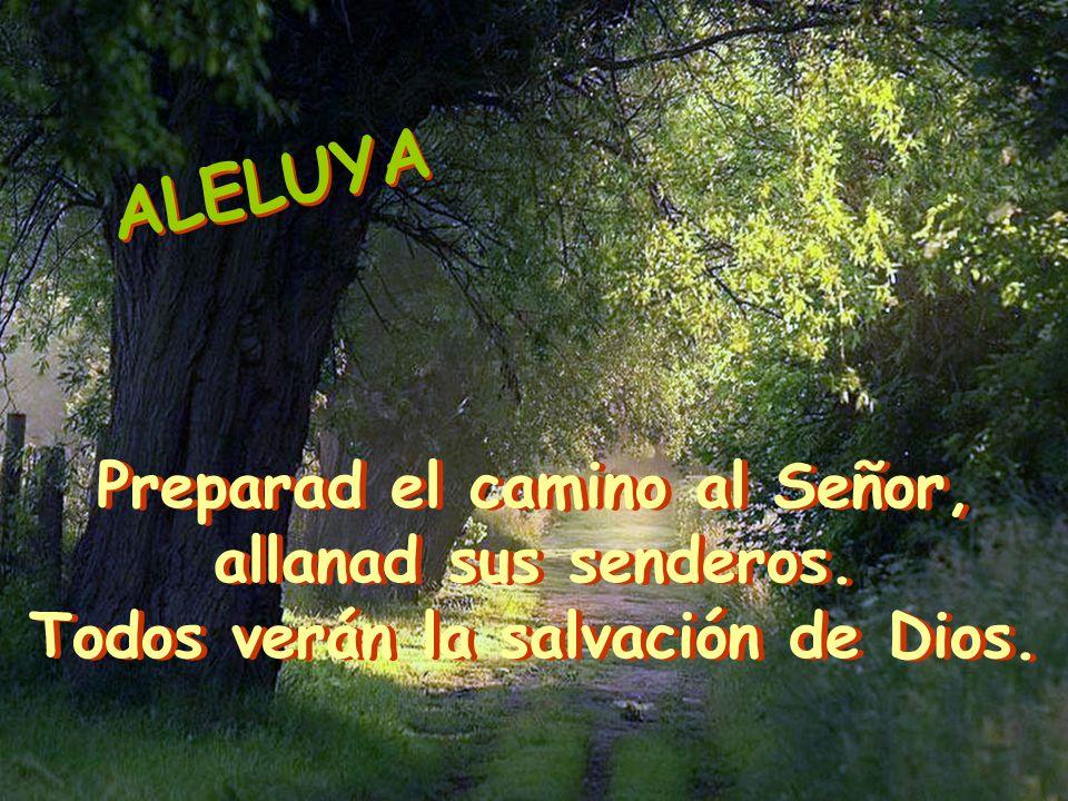 Preparad el camino al Señor, Todos verán la salvación de Dios.