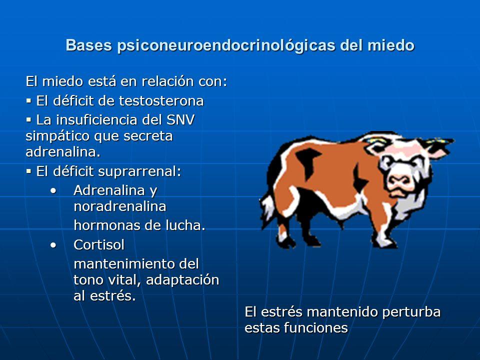 Bases psiconeuroendocrinológicas del miedo
