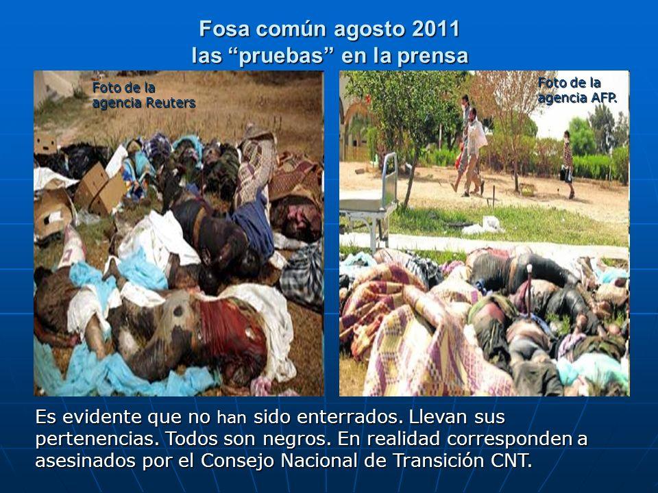Fosa común agosto 2011 las pruebas en la prensa
