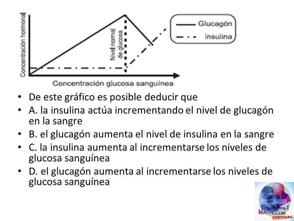 Los niveles de azúcar en un organismo son regulados por