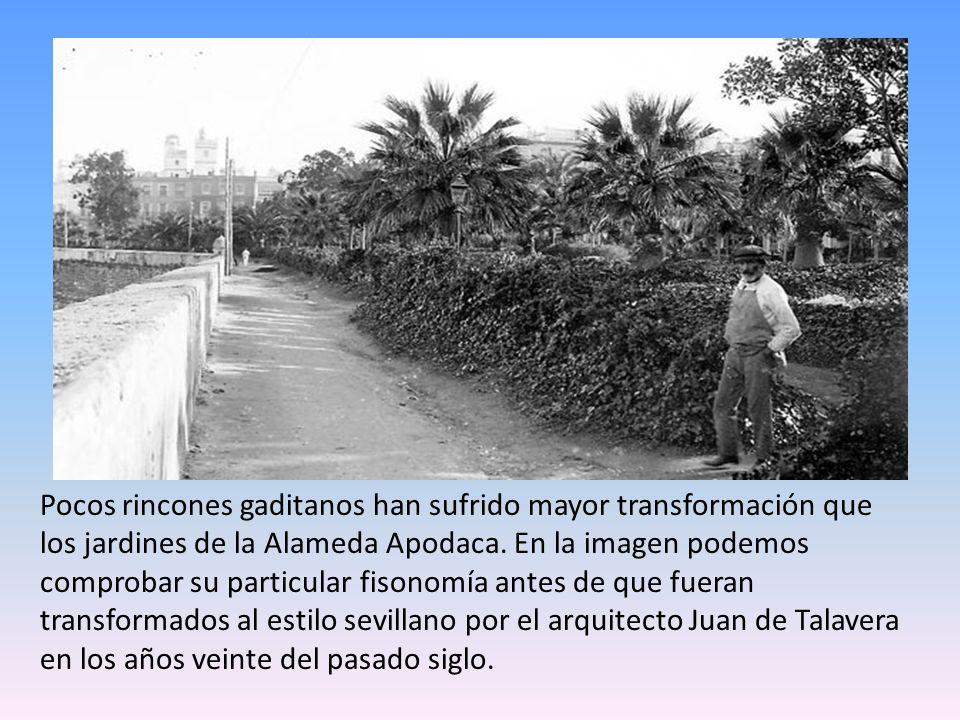 Pocos rincones gaditanos han sufrido mayor transformación que los jardines de la Alameda Apodaca.
