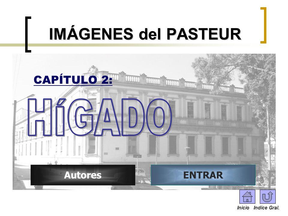 IMÁGENES del PASTEUR HÍGADO CAPÍTULO 2: Autores ENTRAR