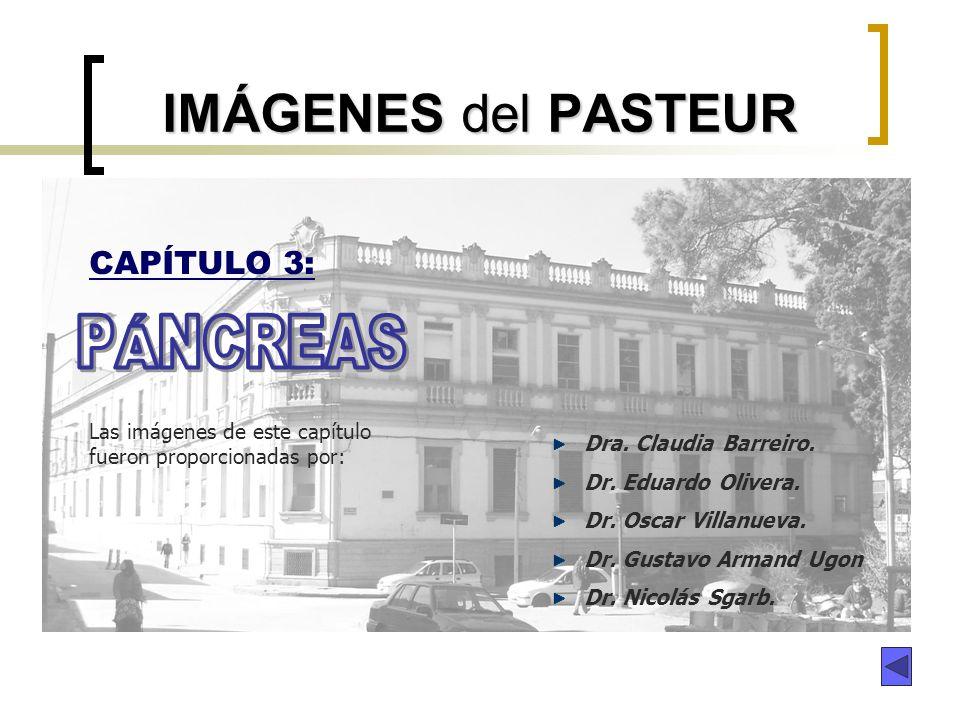 IMÁGENES del PASTEUR PÁNCREAS CAPÍTULO 3: Dra. Claudia Barreiro.