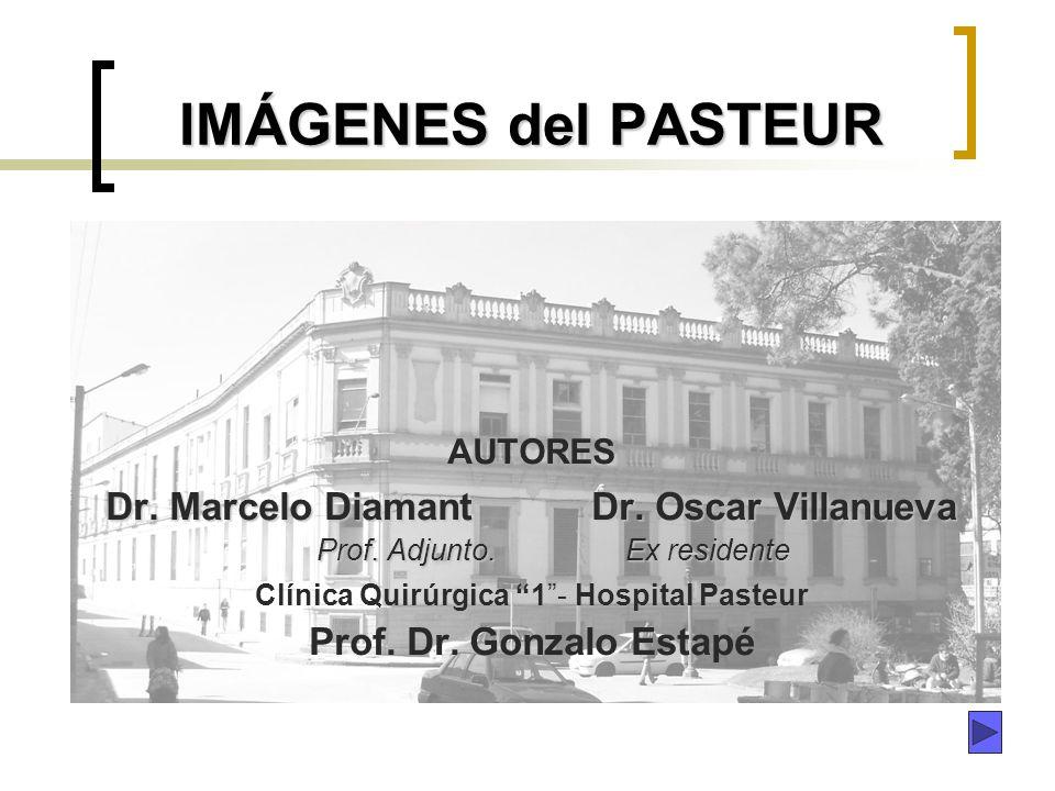 Dr. Marcelo Diamant Dr. Oscar Villanueva