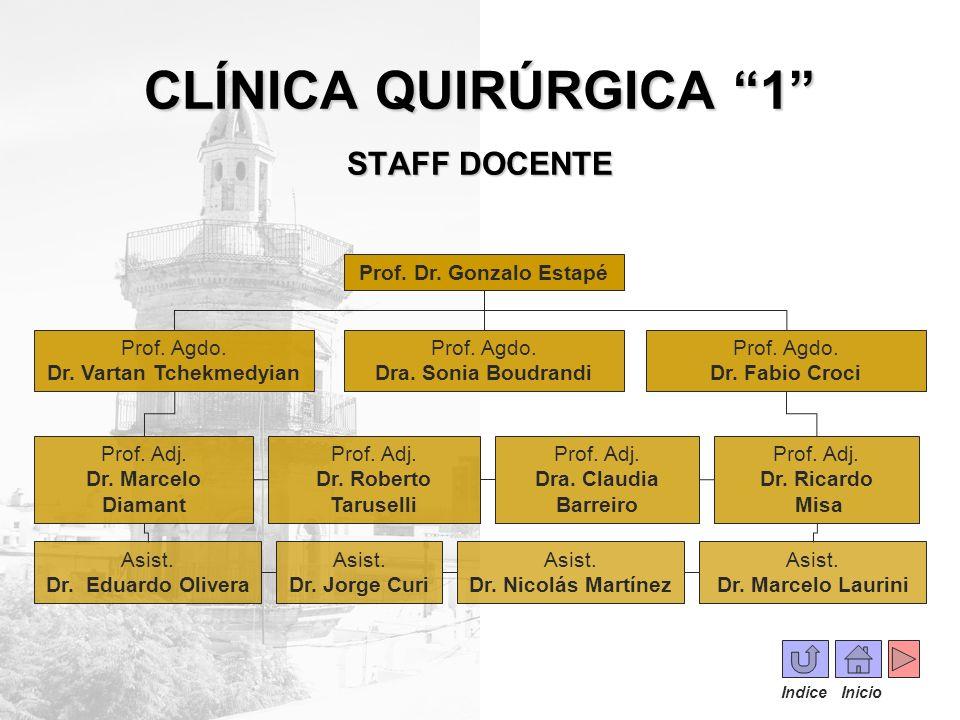 CLÍNICA QUIRÚRGICA 1 STAFF DOCENTE