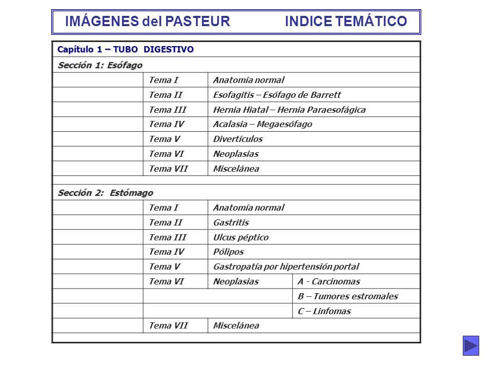 IMÁGENES del PASTEUR INDICE TEMÁTICO