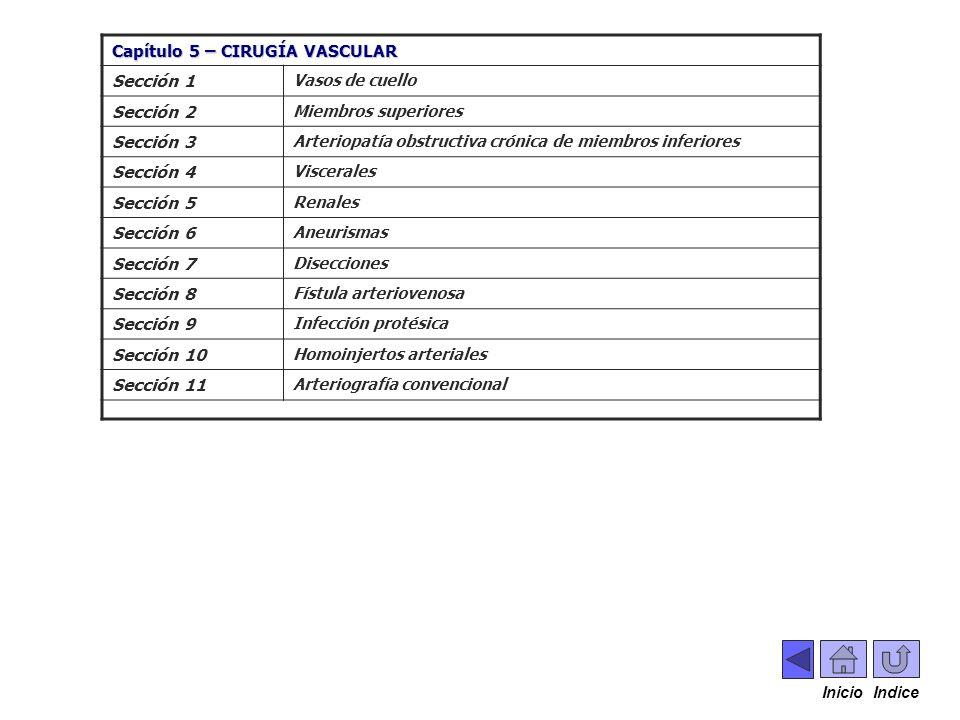 . Capítulo 5 – CIRUGÍA VASCULAR Sección 1 Sección 2 Sección 3