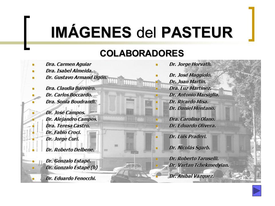 IMÁGENES del PASTEUR COLABORADORES
