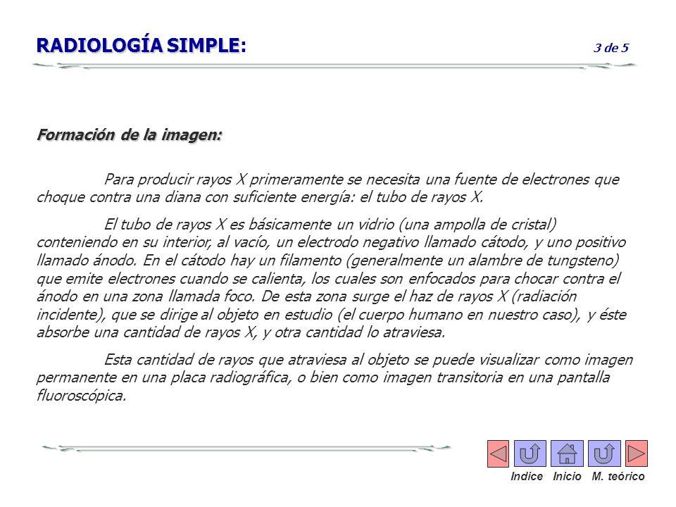 RADIOLOGÍA SIMPLE: 3 de 5 Formación de la imagen: