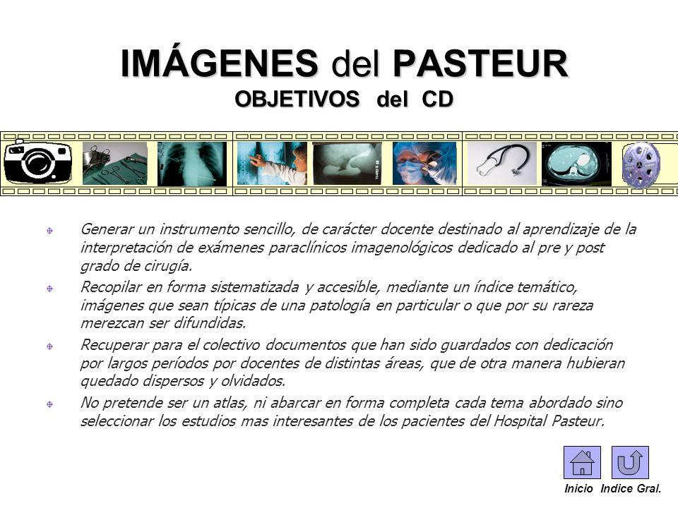 IMÁGENES del PASTEUR OBJETIVOS del CD