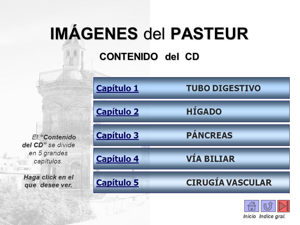 IMÁGENES del PASTEUR CONTENIDO del CD