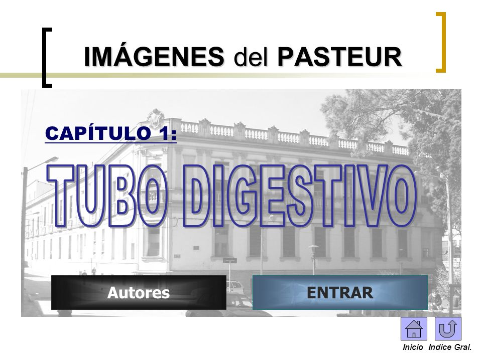 IMÁGENES del PASTEUR TUBO DIGESTIVO CAPÍTULO 1: Autores ENTRAR