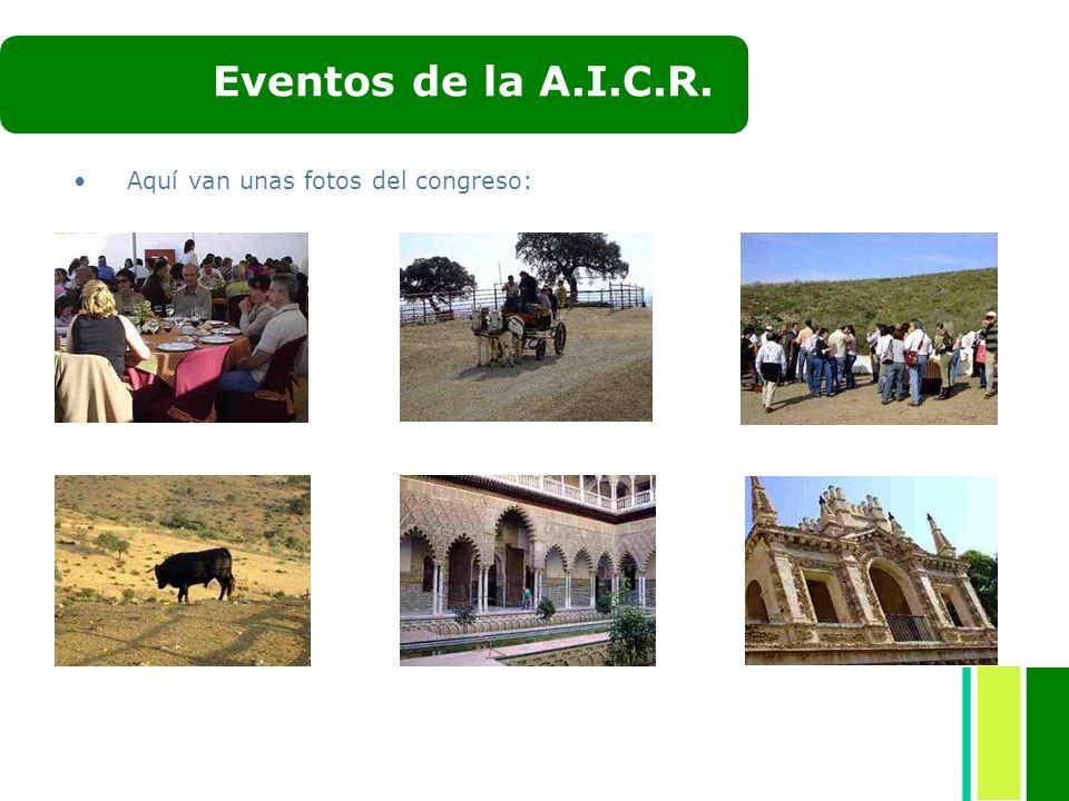 Eventos de la A.I.C.R. Aquí van unas fotos del congreso: