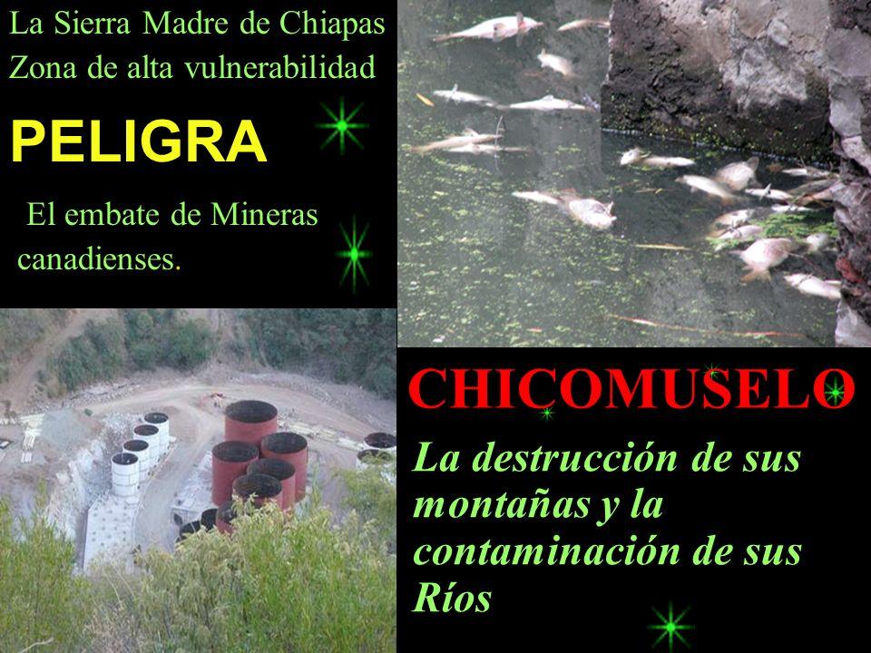 La destrucción de sus montañas y la contaminación de sus Ríos