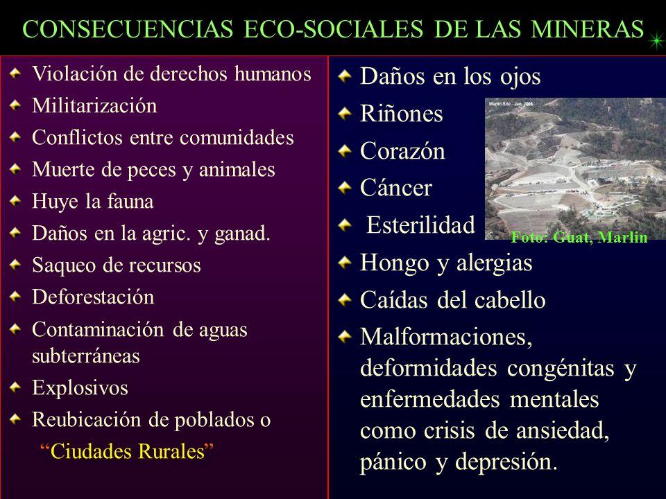 CONSECUENCIAS ECO-SOCIALES DE LAS MINERAS