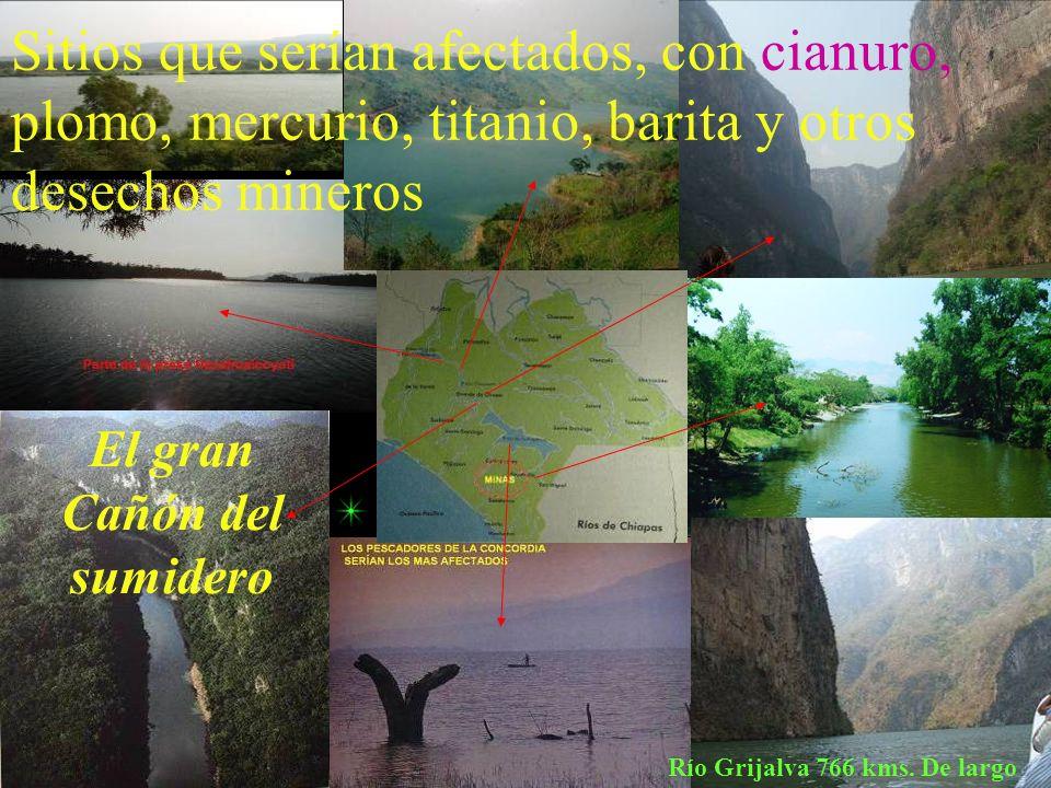 El gran Cañón del sumidero Río Grijalva 766 kms. De largo