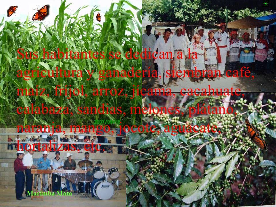 Sus habitantes se dedican a la agricultura y ganadería, siembran café, maíz, fríjol, arroz, jícama, cacahuate, calabaza, sandias, melones, plátano, naranja, mango, jocote, aguacate, hortalizas, etc.
