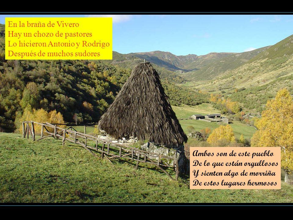 En la braña de Vivero Hay un chozo de pastores. Lo hicieron Antonio y Rodrigo. Después de muchos sudores.