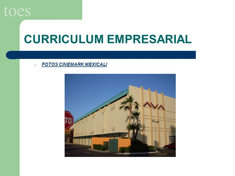 CURRICULUM EMPRESARIAL
