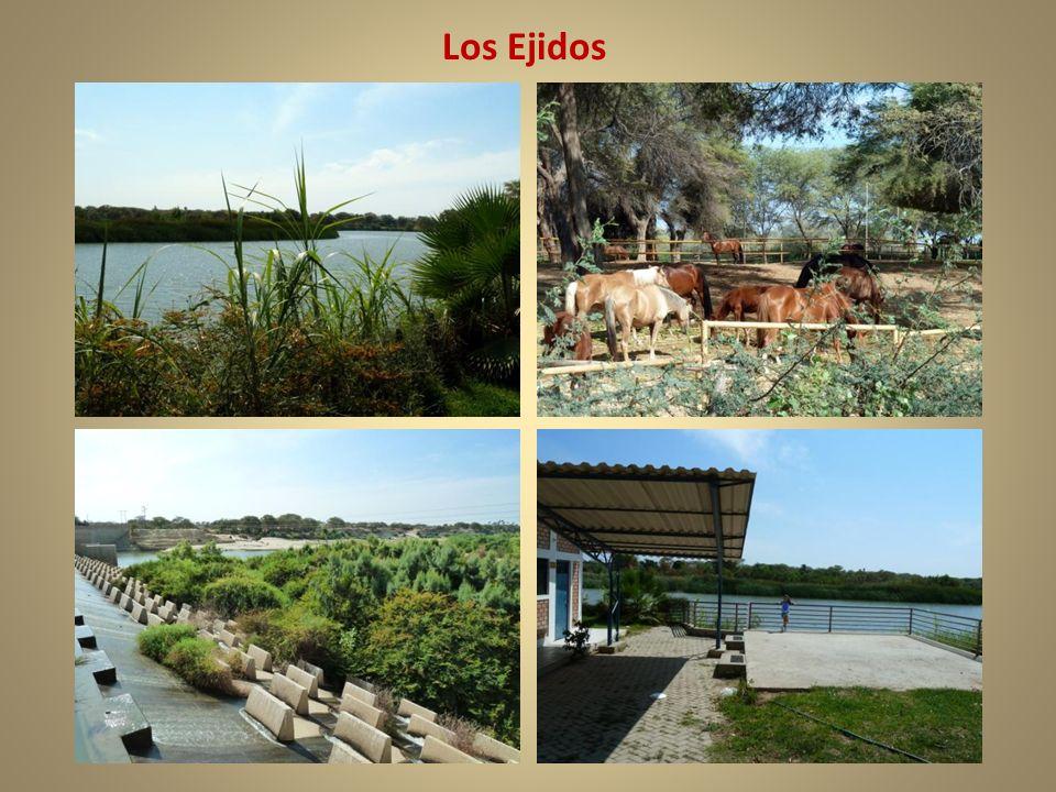 Los Ejidos