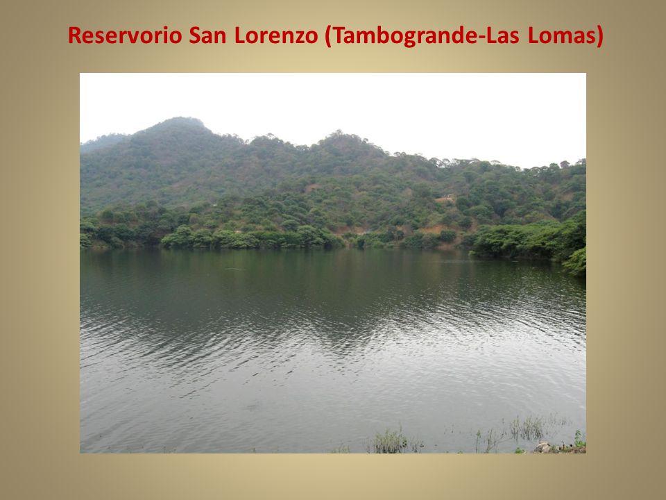 Reservorio San Lorenzo (Tambogrande-Las Lomas)