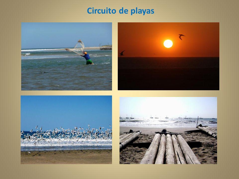 Circuito de playas
